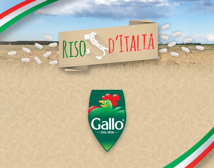 06-riso-gallo_sito_news_riso-ditalia_img_700x550